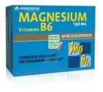 Arkovital Magnésium Vitamine B6 Gélules B/120 à BIGANOS
