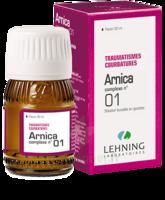Lehning Arnica Complexe N° 1 Solution Buvable En Gouttes Fl/30ml à BIGANOS