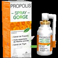 3 Chenes Propolis Spray Gorge Fl/25ml à BIGANOS