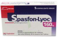 SPASFON LYOC 160 mg, lyophilisat oral à BIGANOS