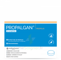 Aragan Propalgan Comprimés orodispersibles adulte B/20 à BIGANOS