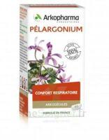 Arkogélules Pélargonium Gélules Fl/45 à BIGANOS
