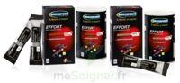 Ergysport Effort Poudre pour boisson pêche Pot/450g à BIGANOS