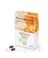 MENOPHYTEA CAPILLAIRE, bt 30 à BIGANOS