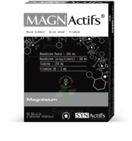 Synactifs Magnactifs Gélules B/60 à BIGANOS