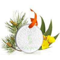 Puressentiel Diffusion Diffuseur Céramique galet médaillon pour Huiles Essentielles à BIGANOS