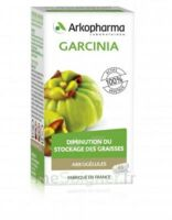 Arkogélules Garcinia Gélules Fl/45 à BIGANOS