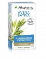 Arkogélules Avena Sativa Gélules Fl/45 à BIGANOS