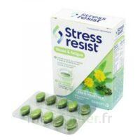 Stress Resist Comprimés Stress & Fatigue B/30 à BIGANOS