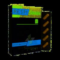 Synactifs Respigreen Bio Gélules B/10 à BIGANOS