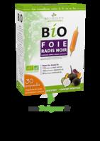 3 Chenes Bio Radis Noir Solution Buvable Foie 30 Ampoules/10ml à BIGANOS