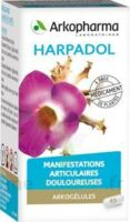 ARKOGELULES HARPAGOPHYTON Gélules Fl/150 à BIGANOS