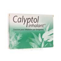 CALYPTOL INHALANT, émulsion pour inhalation par fumigation à BIGANOS