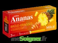 MILICAL ANANAS BRULEUR DE GRAISSE à BIGANOS