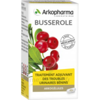 Arkogelules Busserole Gélules Fl/45 à BIGANOS