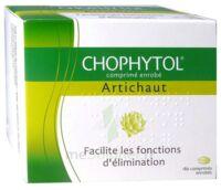 Chophytol Cpr Enr 6plaq/30 à BIGANOS