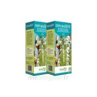 Herbalgem Dépurasève Bio 250ml à BIGANOS
