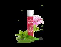 PURESSENTIEL ANTI-PIQUE Roller 11 huiles essentielles à BIGANOS