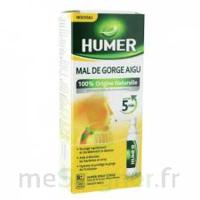 HUMER MAL DE GORGE AIGU à BIGANOS