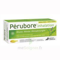 PERUBORE Caps inhalation par vapeur inhalation Plq/15 à BIGANOS