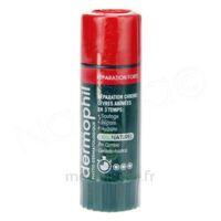 Dermophil Indien Réparation Forte Lèvres 4 g à BIGANOS