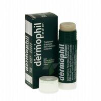 Dermophil Indien Pom Stick Girex/30g à BIGANOS