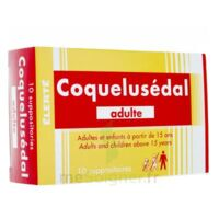 COQUELUSEDAL ADULTES, suppositoire à BIGANOS