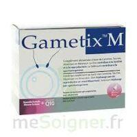 GAMETIX M, bt 30 à BIGANOS