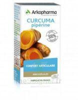 Arkogelules Curcuma Pipérine Gélules Fl/45 à BIGANOS