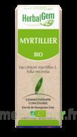 Herbalgem Myrtillier Macérat bio 30ml à BIGANOS