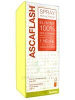 Ascaflash Spray anti-acariens 500ml à BIGANOS