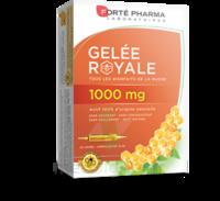 Forte Pharma Gelée Royale 1000 Mg Solution Buvable 20 Ampoules/10ml à BIGANOS