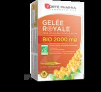 Forte Pharma Gelée Royale Bio 2000 Mg Solution Buvable 20 Ampoules/15ml à BIGANOS