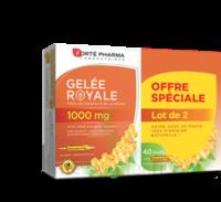 Forte Pharma Gelée Royale 1000 Mg Solution Buvable 2*b/20 Ampoules/10ml à BIGANOS