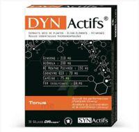 Synactifs Dynactifs Gélules B/30 à BIGANOS