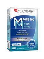 Magné 300 Marin (2 mois) à BIGANOS