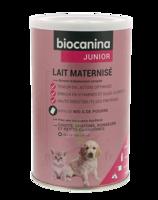 Biocanina Lait poudre maternisé B/400g à BIGANOS