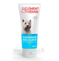 Clément Thékan Shampooing Poils Blancs T/200ml à BIGANOS