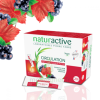 Naturactive Phytothérapie Fluides Solution Buvable Circulation 2b/20 Sticks/10ml à BIGANOS