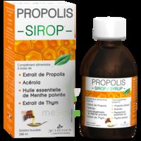3 Chenes Propolis Sirop Fl/200ml à BIGANOS