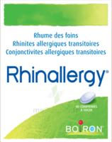 Boiron Rhinallergy Comprimés B/40 à BIGANOS