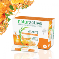 Naturactive Phytothérapie Fluides Solution Buvable Vitalité 2b/20 Sticks/10ml à BIGANOS