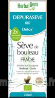 Depuraseve Solution buvable bio Fl/250ml à BIGANOS