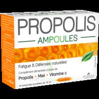 3 Chenes Propolis Solution Buvable 10 Ampoules/10ml à BIGANOS